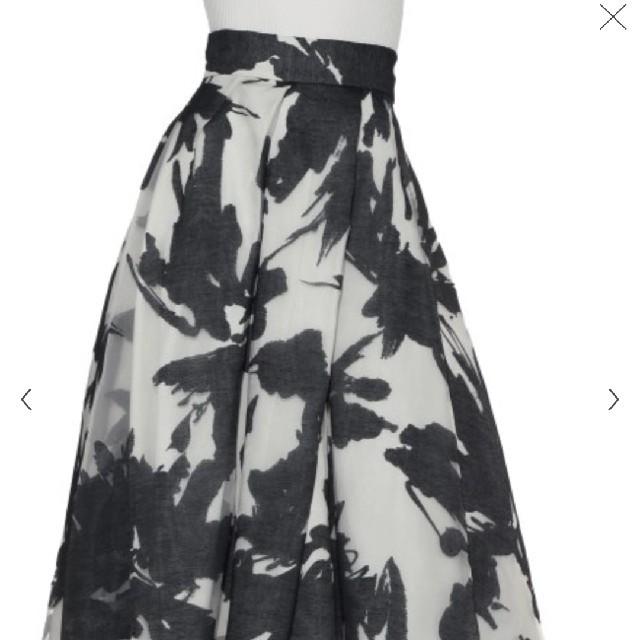 FRAY I.D(フレイアイディー)のフレイアイディー オパールフレアースカート レディースのスカート(ロングスカート)の商品写真