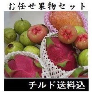 『おまかせ果物セット(S)お試しセット』レンブ グァバ 果物詰め合わせ(フルーツ)