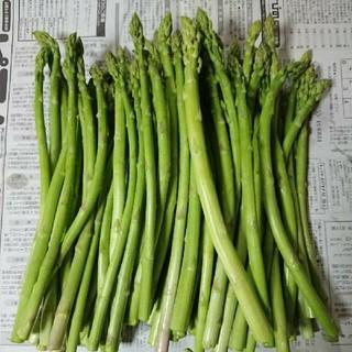(お買得!)佐賀県産グリーンアスパラ3.5キロちょっと(訳あり)(野菜)