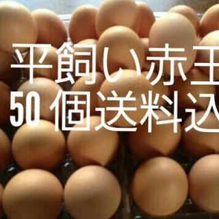 大山山麓 平飼い 赤玉50個 送料込(野菜)