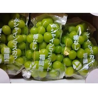 福岡産、大人気種無しシャインマスカット、約2kg送料無料(フルーツ)