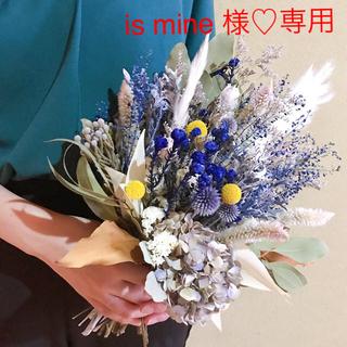 is mine 様 専用♡ドライフラワー♡ブーケ(ドライフラワー)