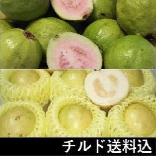 『2種のグァバ(白&ピンク)』傷あり 柔らか品種 ピンクグァバ(フルーツ)