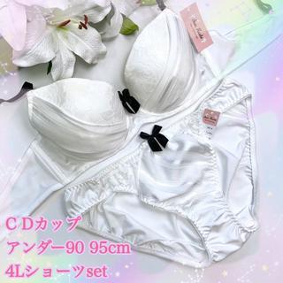 D95 4L♡ラメラインホワイト♪ブラ&ショーツ 大きいサイズ(ブラ&ショーツセット)