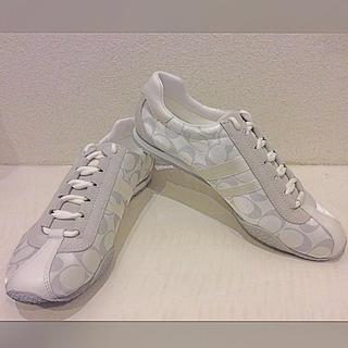 コーチ(COACH)の新品未着用 真っ白なスニーカー 25.5(スニーカー)