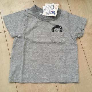 マーキーズTシャツ