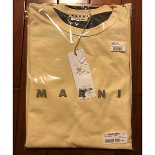 マルニ(Marni)の新品 MARNI マルニ Tシャツ 48 M メンズ マルジェラ ポーター(Tシャツ/カットソー(半袖/袖なし))
