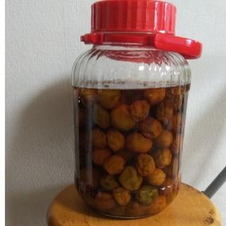 自家製梅ジュースと梅の実(900)(漬物)