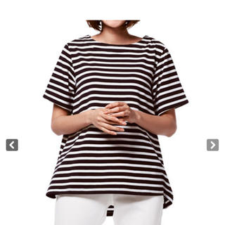 ディーエイチシー(DHC)のDHC  ボーダー さらっとコットン フリアカットソー(Tシャツ(半袖/袖なし))