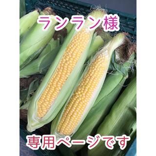 ランランさま専用 恵味ゴールド(野菜)
