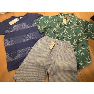 プティマイン(petit main)の今季 130 プティマイン 3枚セット(Tシャツ/カットソー)