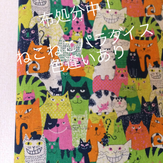 新品キャンバス地 ねこ猫ネコ グリーンオレンジ 110cm幅 54cm(生地/糸)