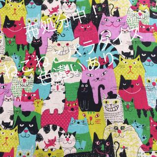 新品キャンバス地 ねこ猫ネコ ビビッド 110cm幅 160cm(生地/糸)