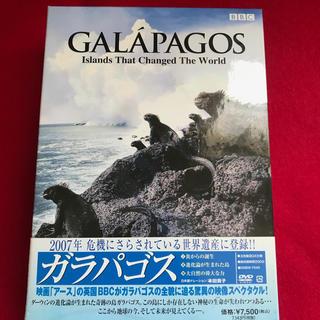 ガラパゴス諸島ドキュメンタリーDVD boxセット売り(ドキュメンタリー)