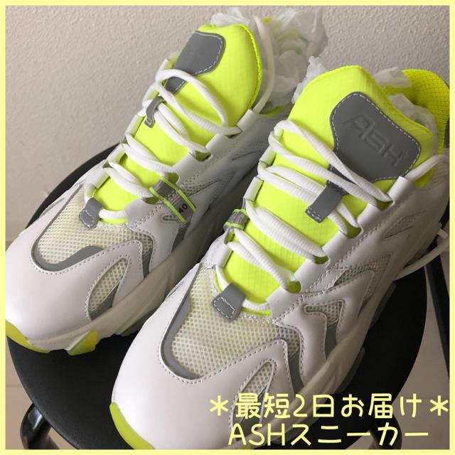 ASH(アッシュ)の*最短2日到着*ASH 全世界完売品エクストリームスニーカー/ホワイト レディースの靴/シューズ(スニーカー)の商品写真
