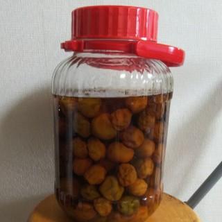 自家製梅ジュースと梅の実(900g)(漬物)