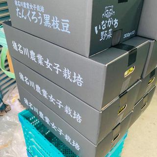 たんくろう黒枝豆(野菜)