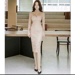 ザラ(ZARA)の新品 タグつき レースワンピース 総レース 結婚式 キャバワ ワンピース ドレス(ナイトドレス)