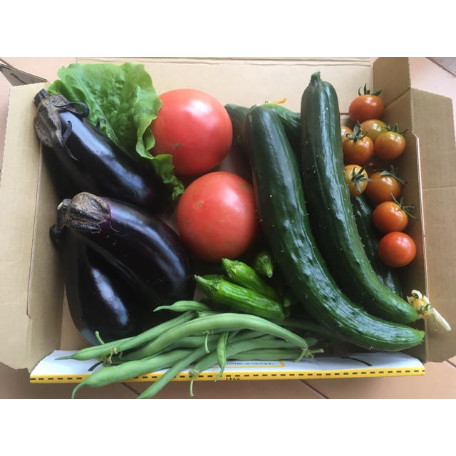 野菜詰め合わせ 食品/飲料/酒の食品(野菜)の商品写真