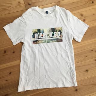 エイチアンドエイチ(H&H)のH&M Tシャツ(Tシャツ/カットソー(半袖/袖なし))
