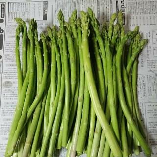 (お買得!)佐賀県産グリーンアスパラ1.8キロ(訳あり)(野菜)