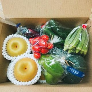 梨(幸水)&野菜セット(野菜)