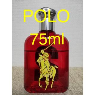 ポロラルフローレン(POLO RALPH LAUREN)のPOLO ポロ ビッグポニー レッド75ml(香水(男性用))
