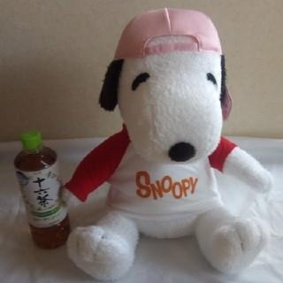スヌーピー(SNOOPY)のスヌーピー ぬいぐるみ ピンクキャップ(ぬいぐるみ)