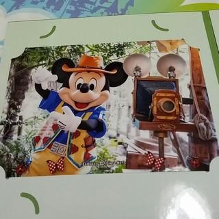 ディズニー(Disney)のグリーティングトレイル ミッキーフォト(写真)