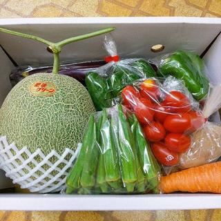 特別セット 肥後グリーンメロン&野菜詰合せ 送料込み(野菜)