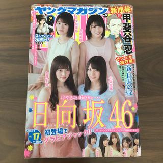 講談社 - ヤングマガジン No.17 日向坂46