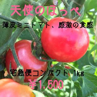 薄皮 天使のほっぺ 1kg(野菜)