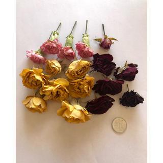 バラ カーネーション 花材 ドライフラワー(ドライフラワー)