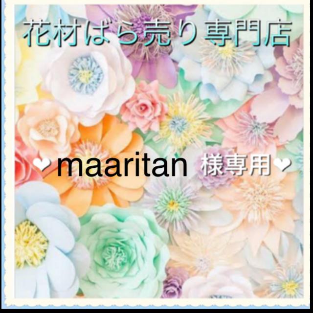 maaritan様専用 ハンドメイドのフラワー/ガーデン(ドライフラワー)の商品写真
