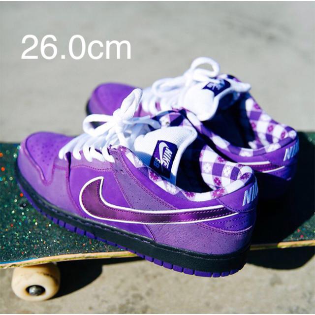 NIKE(ナイキ)のNIKE SB DUNK LOW PRO OG PURPLE LOBSTER メンズの靴/シューズ(スニーカー)の商品写真