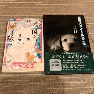 盲導犬クイールの一生  ある日犬の国から手紙が来て  読書感想文(文学/小説)