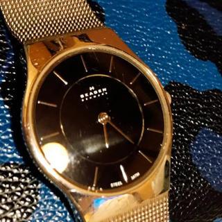 スカーゲン(SKAGEN)のSKAGEN 腕時計 シルバー×ブラック(腕時計)