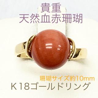 鑑定済み 貴重天然血赤珊瑚  K18ゴールドリング(リング(指輪))