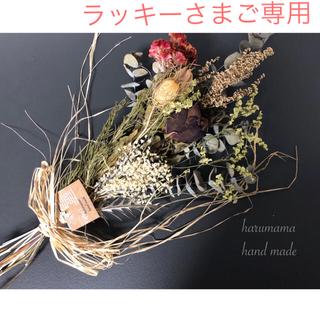 No.106 ケイトウとフーセンポピーのスワッグ❁(ドライフラワー)