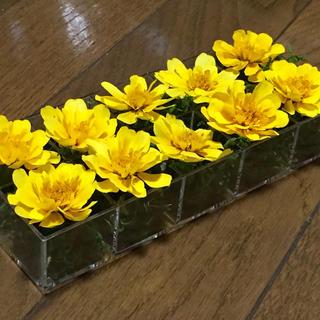 再販‼️お花屋さんが作った本日のドライフラワーはマリーゴールド(ドライフラワー)