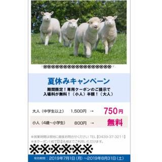 マザー牧場 割引券(その他)