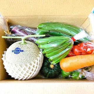 熊本県産 訳あり 大玉アールスメロン&野菜セット 送料込み (野菜)