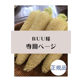 【ruu様専用】とうもろこしピュアホワイト正規品10本 北海道産(フルーツ)