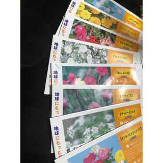 花の種 8種類(その他)