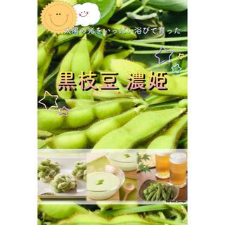 数量限定!  美味しい黒枝豆『濃姫』 800g  無農薬野菜 コンパクトBOX(野菜)