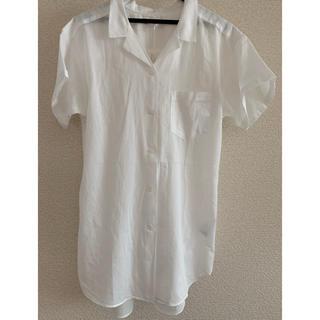 イッカ(ikka)のikka レディースシャツ(シャツ/ブラウス(半袖/袖なし))