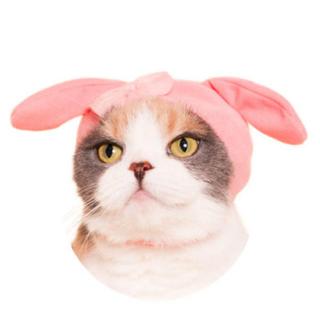 サンリオ(サンリオ)の猫のかぶりもの マイメロディ ガチャガチャ ねこサンリオ(猫)