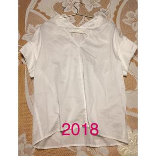 プラージュ(Plage)のプラージュ コットンブラウス 美品(シャツ/ブラウス(半袖/袖なし))