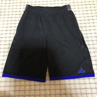 アディダス(adidas)のレディース adidas トレーニングパンツ ブラック M(ウェア)