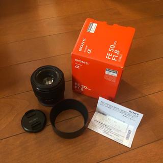 ソニー(SONY)のSONY FE 50mm F1.8 SEL50F18F(レンズ(単焦点))